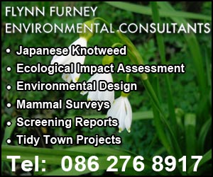 Flynn Furney Environmental Consultants