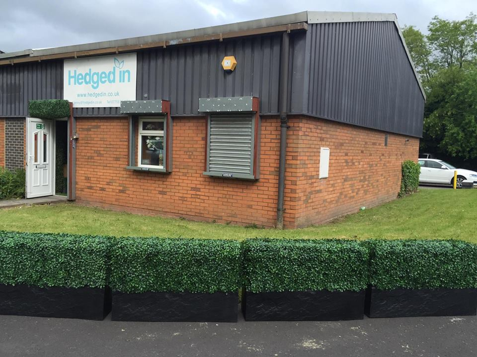 UV fade protected instant hedge planters Gallery Image