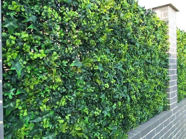 Hedged In Ltd Stockport Landscape Gardeners