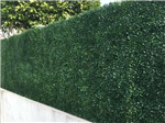 artificial boxwood hedging screening Gallery Thumbnail