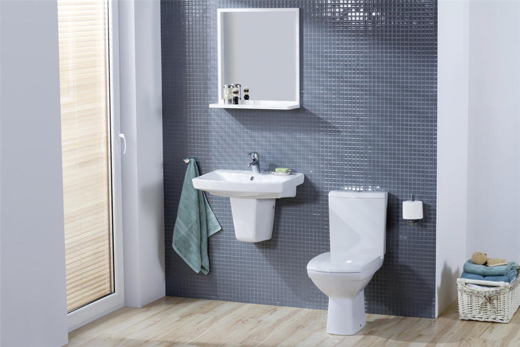 Carina Toilet & Basin With Pedestal Gallery Image