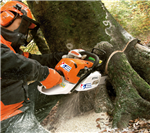 Chainsaw Training Course Gallery Thumbnail