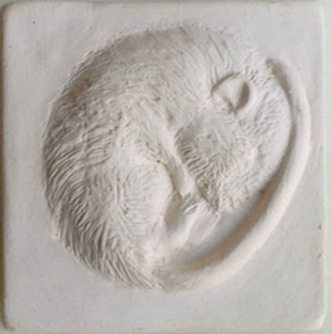 "3"" tile - Sleeping Dormouse Gallery Image"