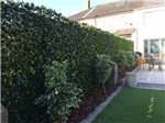 Greenfx Trellis hedge screening, easy to install. Gallery Thumbnail