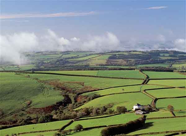 Proposals Welcomed Under Category 2 Of Rural Development Fund