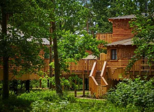 Proposal For New Lodgings And Facilities At Longford Forest